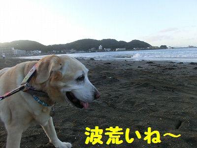 連休最終日・・・敬老記念日_e0222588_17385061.jpg
