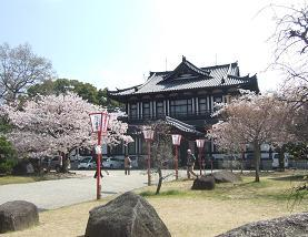 桜名所めぐり 大和郡山城址_d0227610_6543969.jpg