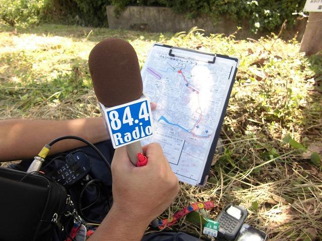 ラジオf「ふじさんコンパス」で「彼岸花ウォーク」の見どころを事前紹介_f0141310_716518.jpg