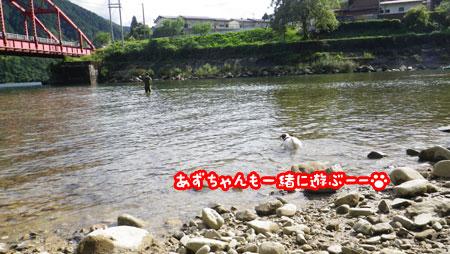 f0129214_1063689.jpg