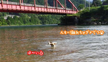 f0129214_11295589.jpg