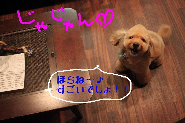 こんにちわ!!_b0130018_1452381.jpg