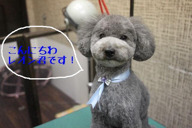 こんにちわ!!_b0130018_151557.jpg
