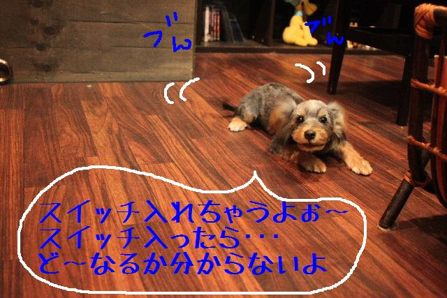b0130018_947740.jpg