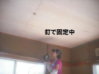 作業初日_f0031037_21304527.jpg