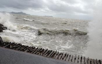 沖縄方面からのすごい風に吹かれて…_a0017350_014180.jpg