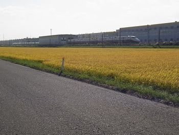 松島サイクリングへ_e0140354_11101992.jpg