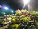 季節が代わり夏から秋へ…お花も衣替え…_d0266681_9594441.jpg