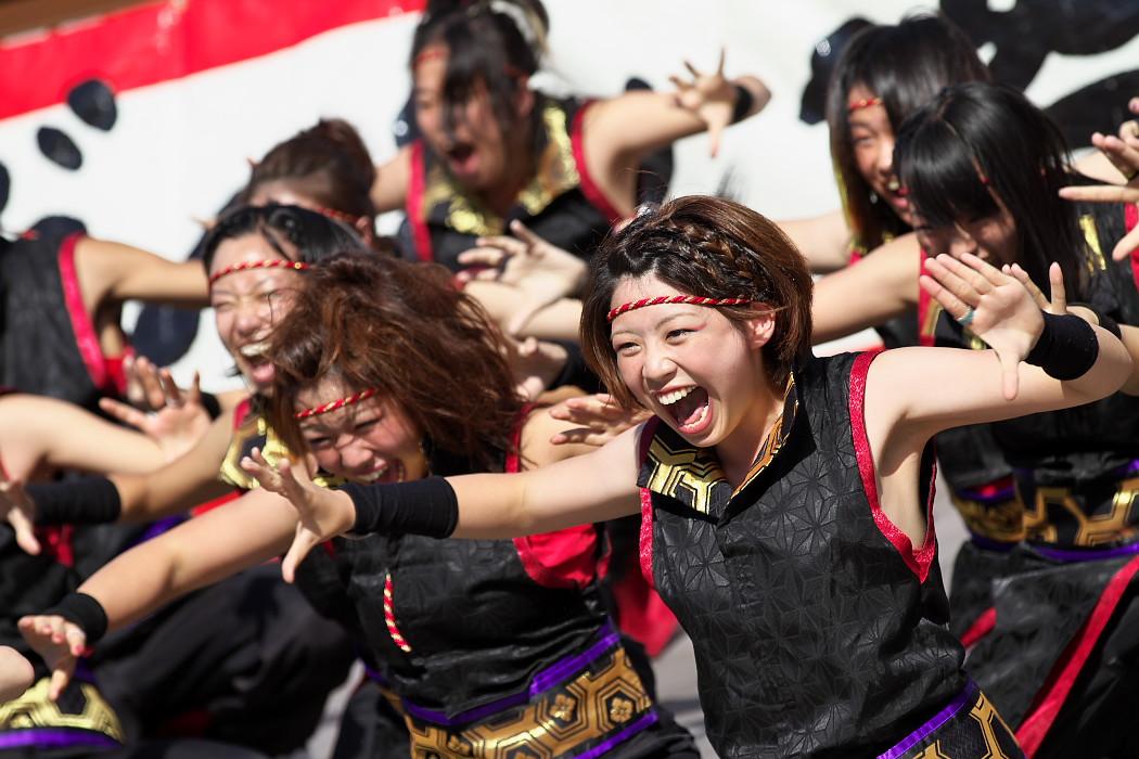 凰@第10回静岡おだっくい祭り_c0187584_18381264.jpg