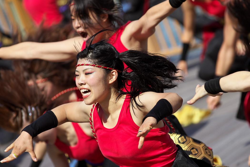 凰@第10回静岡おだっくい祭り_c0187584_18441432.jpg