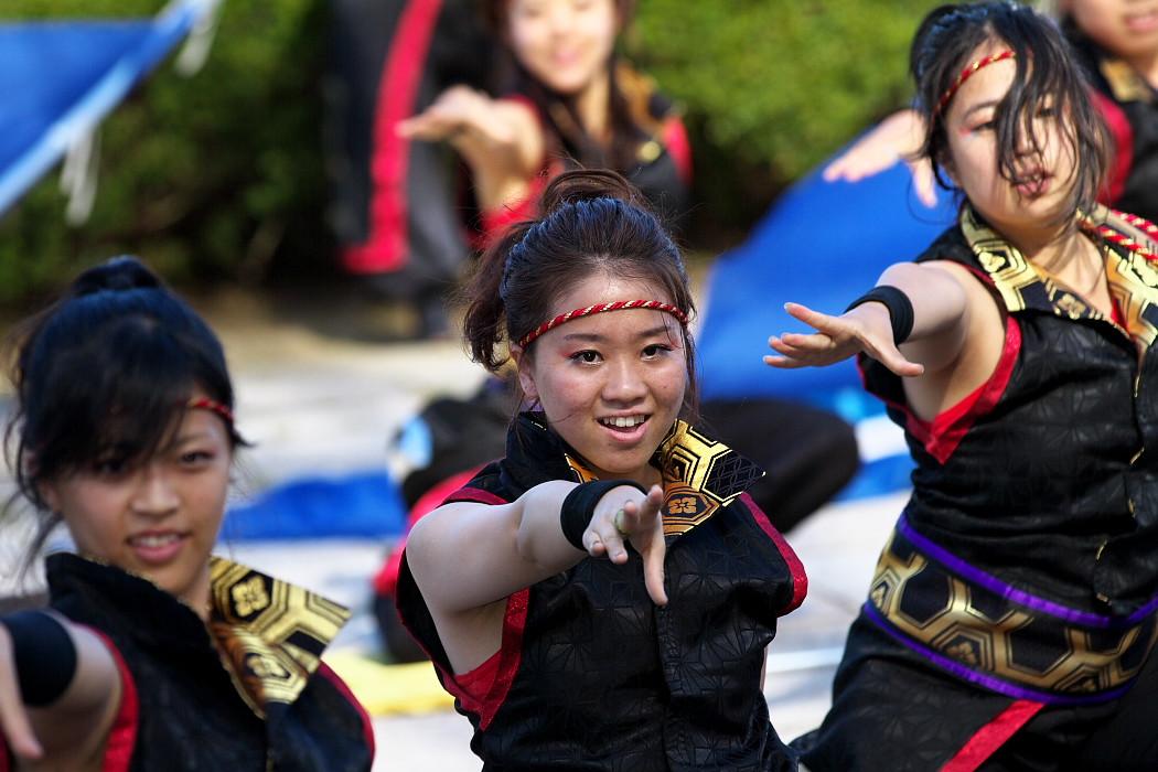 凰@第10回静岡おだっくい祭り_c0187584_18474647.jpg