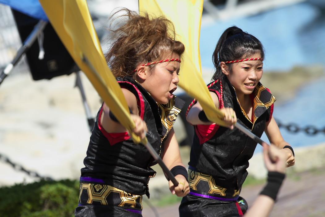 凰@第10回静岡おだっくい祭り_c0187584_18475665.jpg