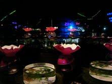 私と奈良と金魚と_f0230689_16523437.jpg