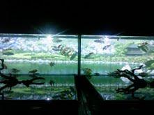 私と奈良と金魚と_f0230689_1714525.jpg
