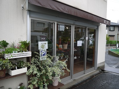 お知らせ ワークショップin菜つ芽_a0233896_155371.jpg