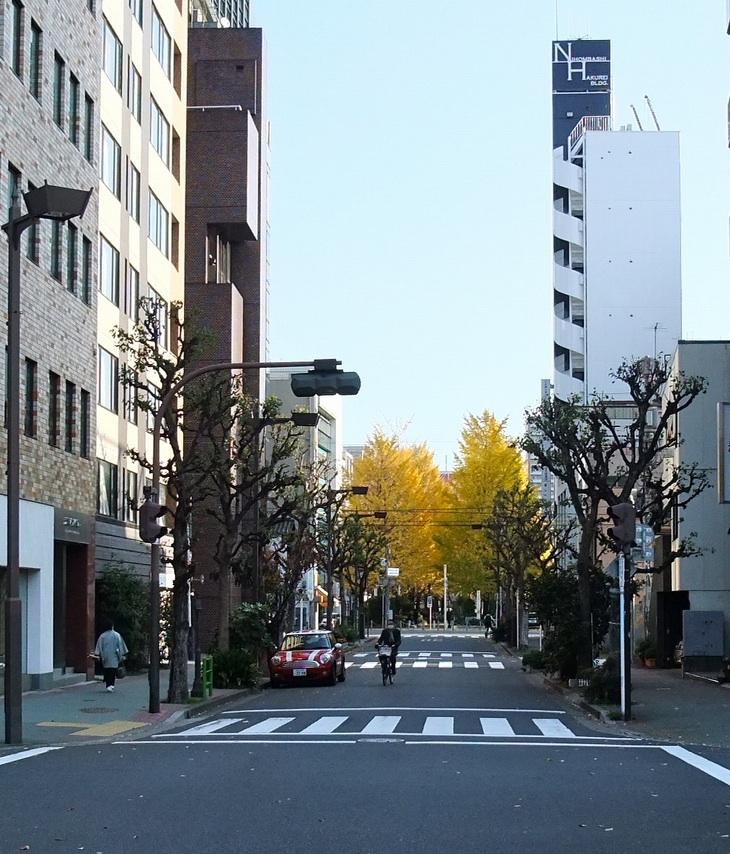 秋遠からじ_b0151300_1054835.jpg
