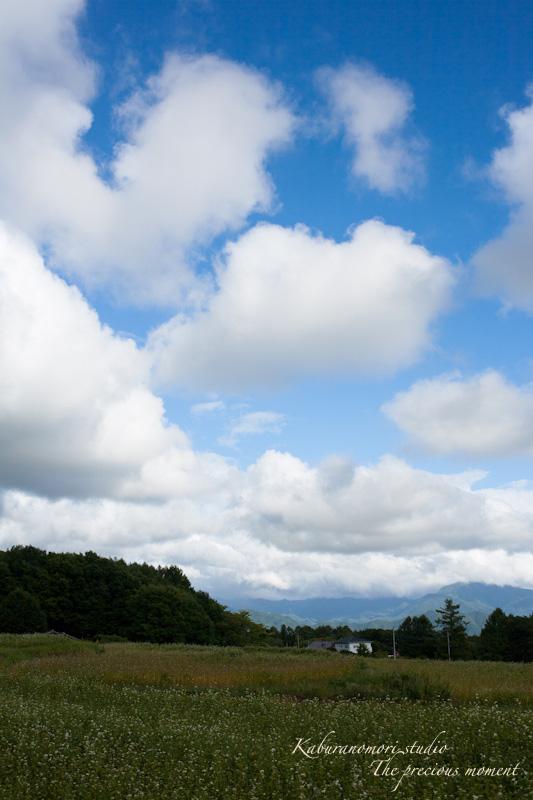 ゆっくりゆっくり秋の空に_c0137403_1825591.jpg