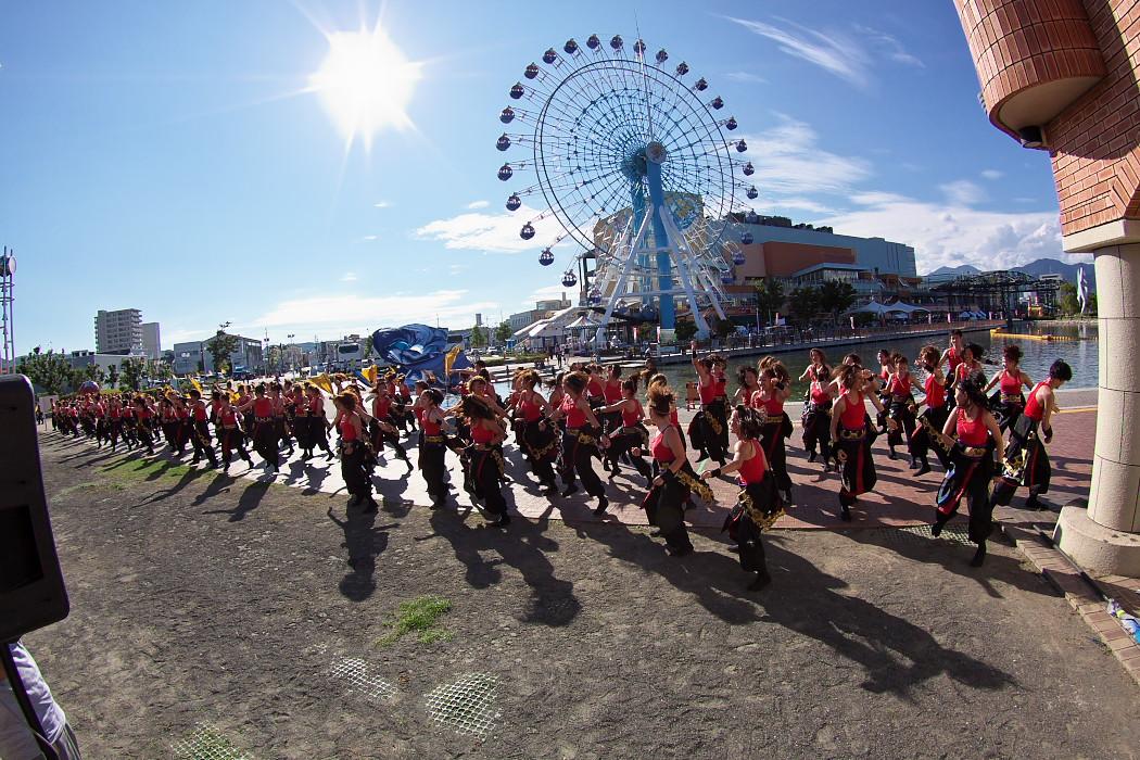 凰@第10回静岡おだっくい祭り(その2)_c0187584_20103559.jpg