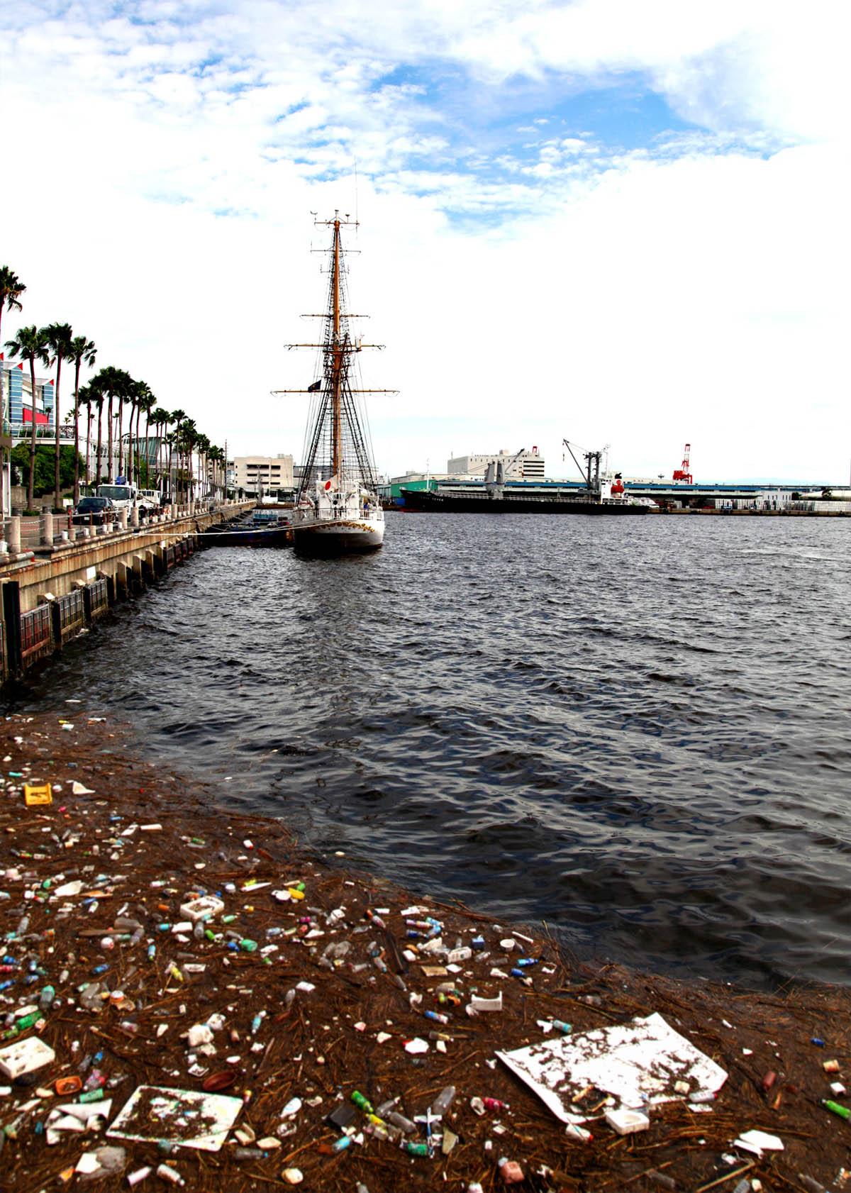 南港.楽しい世界.イロイロ._e0254493_23252137.jpg