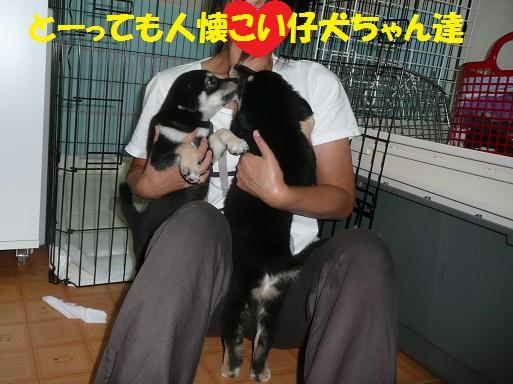 可愛いお客さま♪_f0121712_2262059.jpg
