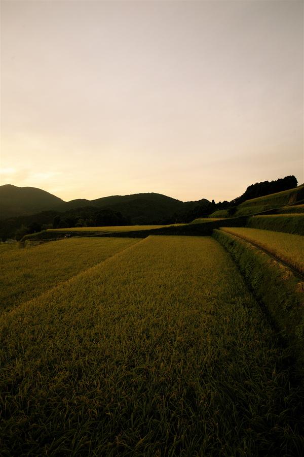 9月20日(木)午後5時半から午後6時半まで若木町川内で撮影させていただきました。_b0014152_2336419.jpg