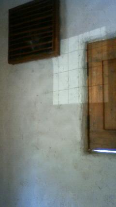 a0192961_10585263.jpg