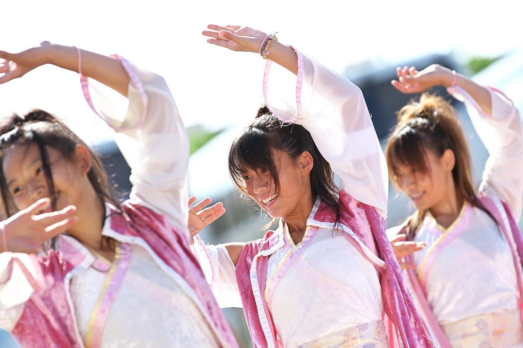 よさこい炎舞連神陽~Sin~@第10回静岡おだっくい祭り_c0187584_1944487.jpg