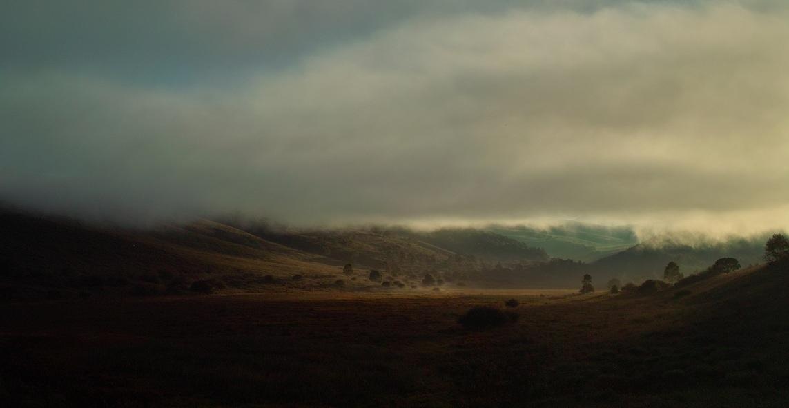 霧ケ峰高原の池のくるみ湿原_f0163491_9235218.jpg