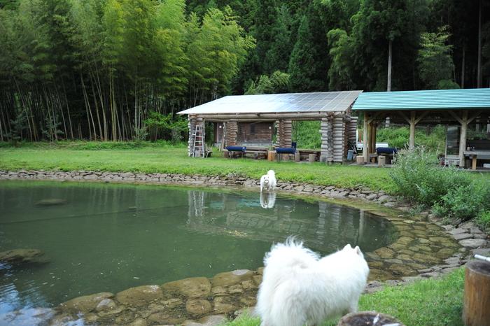 滋賀キャンプ part4_a0049296_20454339.jpg