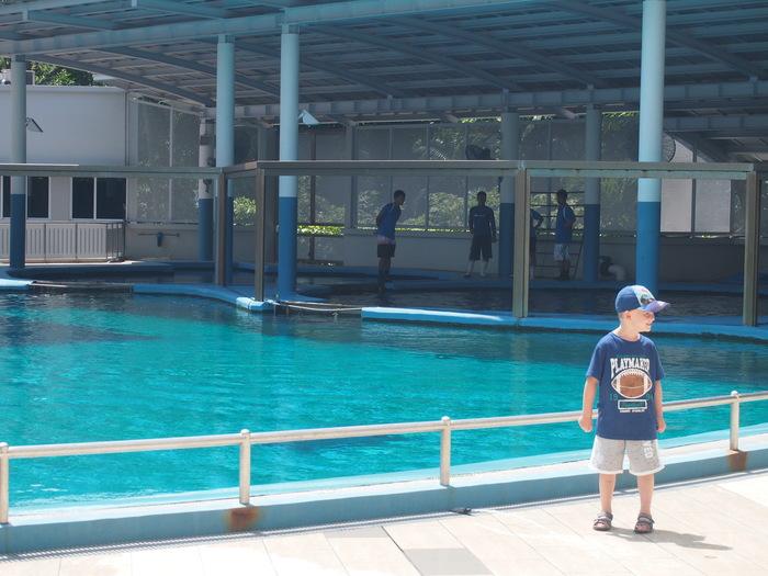 2012 6月 シンガポール 18  水族館に行ってみた_f0062122_1055185.jpg
