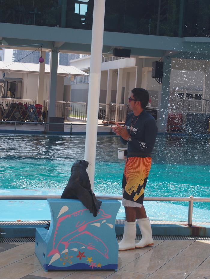 2012 6月 シンガポール 18  水族館に行ってみた_f0062122_107381.jpg