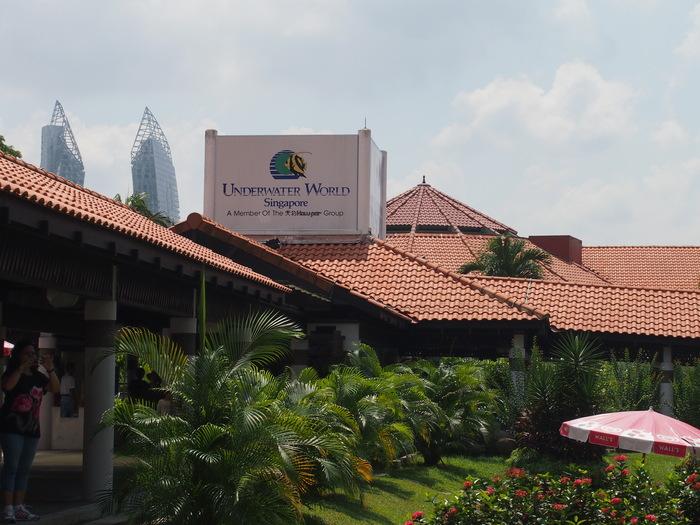 2012 6月 シンガポール 18  水族館に行ってみた_f0062122_949291.jpg