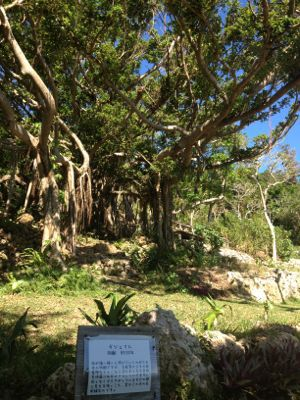 沖縄の続き_f0095325_612652.jpg