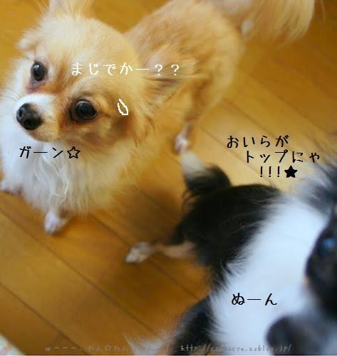 b0112758_22464077.jpg