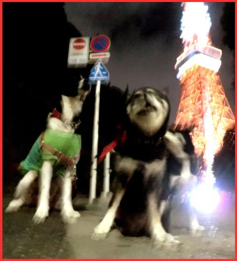東京タワー、「 I  LOVE !」。_e0236072_141390.jpg