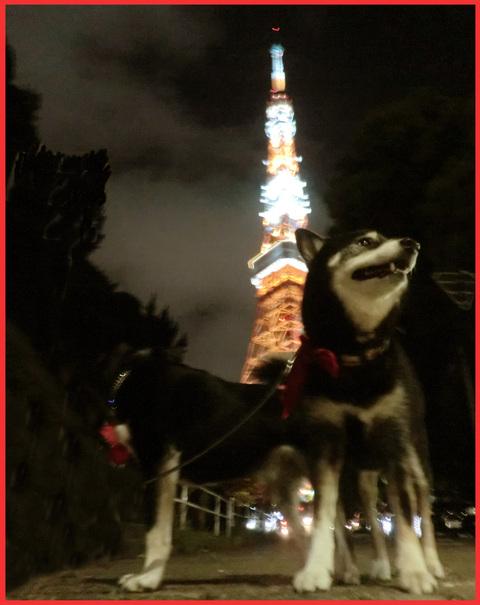 東京タワー、「 I  LOVE !」。_e0236072_1453978.jpg