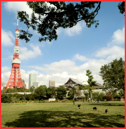 東京タワー、「 I  LOVE !」。_e0236072_1495890.jpg