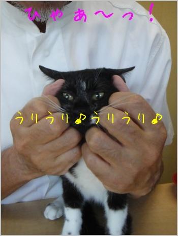 f0164479_0225778.jpg