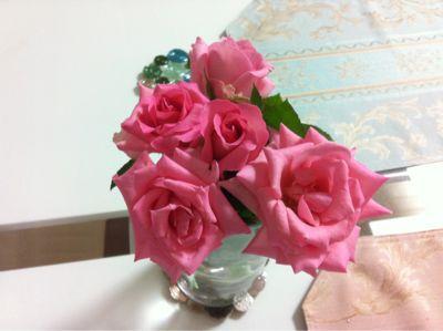 毎日バラのプレゼント (追記あり)_f0186787_2155793.jpg