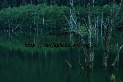 e0268999_259831.jpg