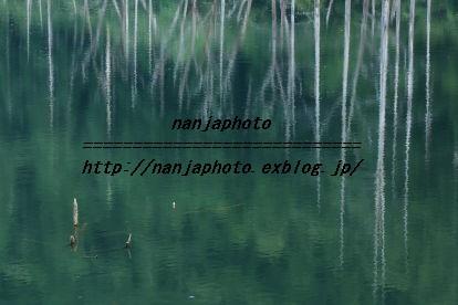 e0268999_3203998.jpg