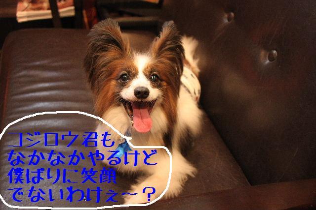 b0130018_9381158.jpg