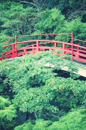 昭和のお城_a0275527_223417.jpg
