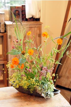 秋の小花と小さな天使_d0086634_1772876.jpg