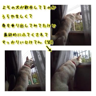 f0195543_14311635.jpg