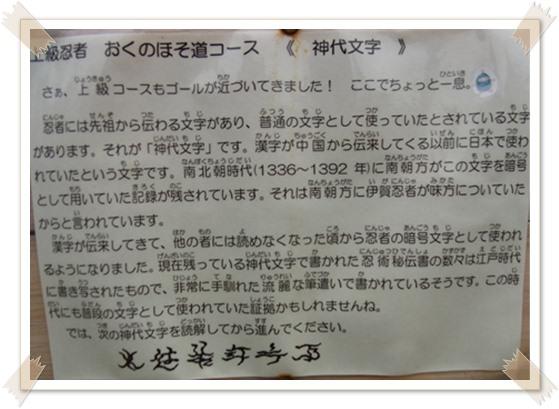 伊賀上野_b0025947_1371326.jpg