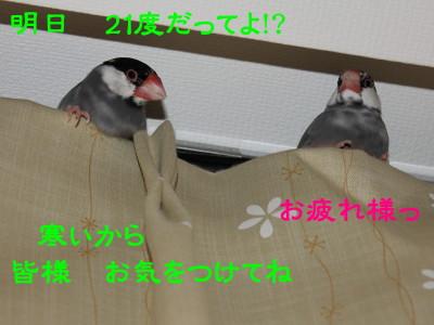 b0158061_21402937.jpg