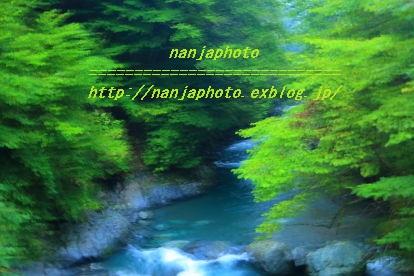 e0268999_25230.jpg