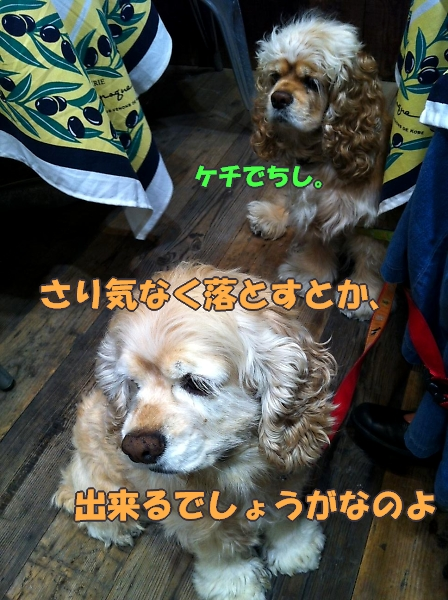 b0067012_0255596.jpg