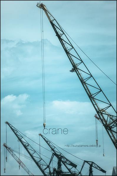 Crane\'s_f0100215_0181342.jpg